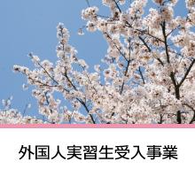 外国人実習生受入授業